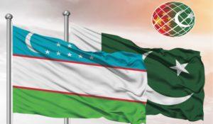 China-Pakistan Economic Corridor (CPEC) has further consolidated Pakistan's energy